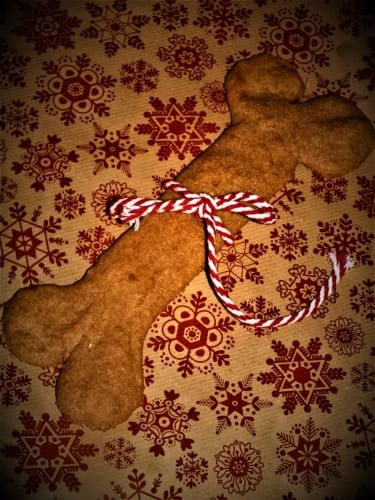 Velká kost pro psy – s tuňákem (ideální jako Vánoční dárek pro vašeho miláčka)