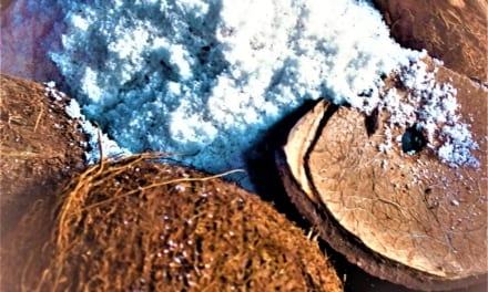 Kokosové mouka z čerstvého kokosu (a mléko jako bonus)