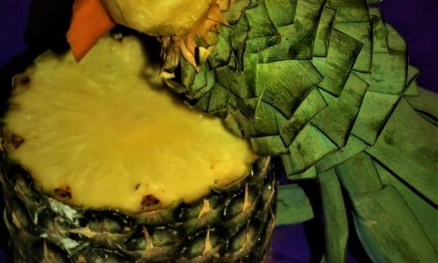 Papoušek z ananasu