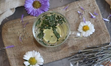 Zelený čaj s mátou peprnou