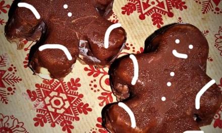 Vánoční zmrzlina v čokoládě