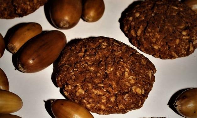 žaludové sušenky s ovesnými vločkami