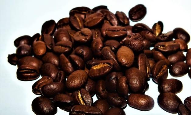 Použitý kávový lógr jako lék na celulitidu