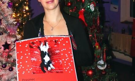 Fotokalendář jako krásný dárek