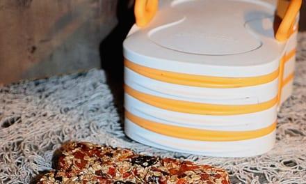 Meruňkové tyčinky