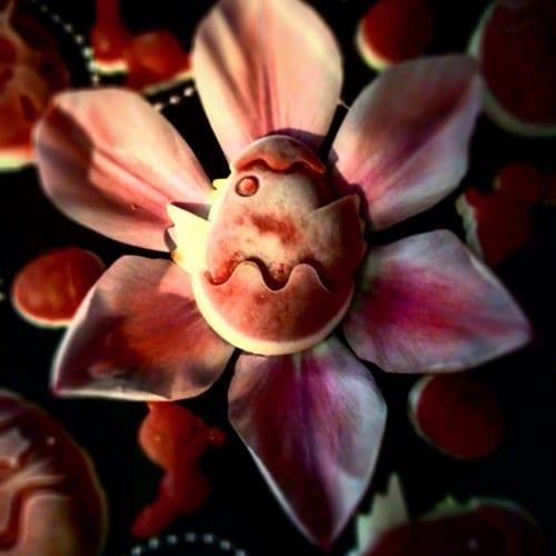 Velikonoční mini panacotty