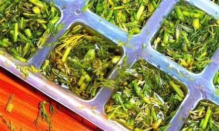 Kopr mražený v olivovém oleji