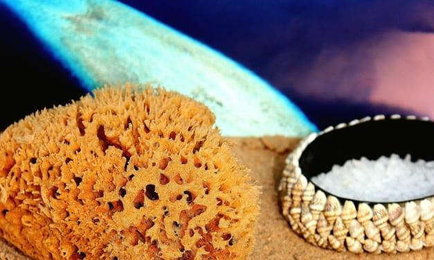 Zero waste: Minerální mořské houby na mytí