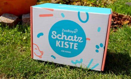 Testujeme psí box od Zoo Royal