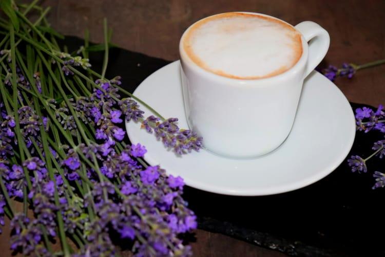 Cafe Melya