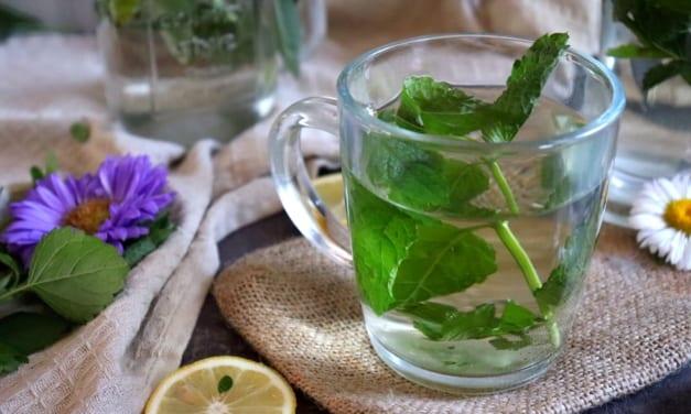 Mátový sprej pro osvěžení dechu