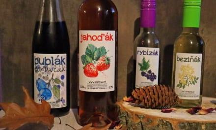 Ochutnávka ovocných vín
