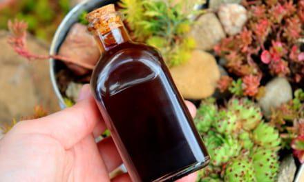 Kávový olej z kávového lógru